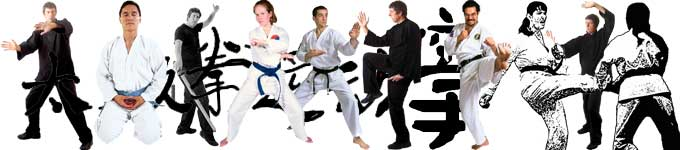 guychi tai chi workshop for karate clubs